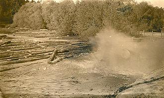 Log pond - Splash of logs being dumped into a log pond.