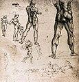 Leonardo da vinci, Figure studies.jpg
