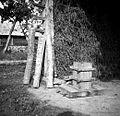 Lesena preša in bukova polena, Mala vas 1948.jpg