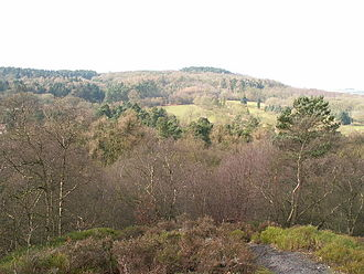 Lickey Hills Country Park - Image: Lickey Hills