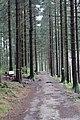 Liebesbankweg - panoramio (13).jpg