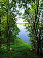 Lielupe river - panoramio (1).jpg