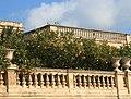 Limoni a Piazza Duomo - Siracusa (Sicilia) (cropped).jpg