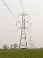 Line of pylons - geograph.org.uk - 383658.jpg