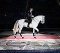 Lipizzan Stallions, proud horse and rider 2.jpg