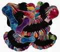 LittleGumnut Cloth Pads CSP.jpg