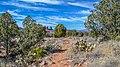 Llama Trail (39316140434).jpg
