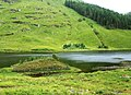 Loch na Leitreach - geograph.org.uk - 1420343.jpg