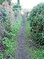 Looking W along footpath towards Middle Pett Farm - geograph.org.uk - 644288.jpg