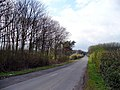 Looking towards Newsham Lodge - geograph.org.uk - 155452.jpg