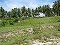 Lottes billeder Philippinerne 2008 016.jpg