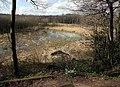 Loynton Moss , Glacial Kettle Hole - geograph.org.uk - 719014.jpg