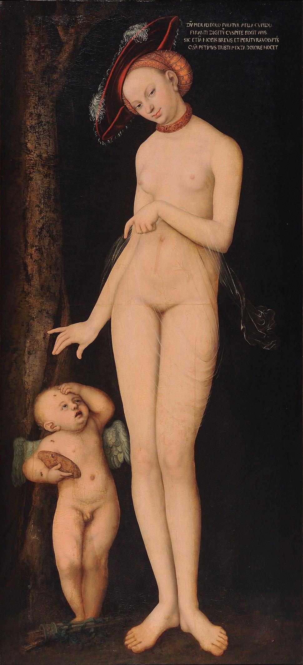 Lucas Cranach d. %C3%84. - Venus and Cupid - WGA05644