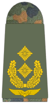 Luftwaffe-321-Generalmajor