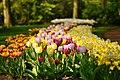 M^m Flores en el parque en la Haya - Creative Commons by gnuckx - panoramio (1).jpg