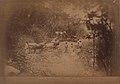 Météorite de Bendégo - rapport présenté au Ministère de l'Agriculture, du Commerce (...) et le transport du météorite de Bendégo de l'interieur de la province de Bahia au Musée National (page 70 crop).jpg