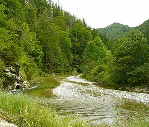 Mürz - The Mürz upstream of Neuberg, a fishing paradise