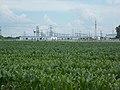 Maize field and MVM OVIT site, 2020 Göd.jpg