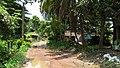 Manosapota Village Road - Simurali - Nadia 20170730115851.jpg