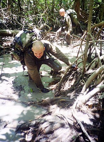 Legionnaires training in French Guiana Marche Fourragere 02.jpg