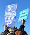 Marriage equality demonstration Paris 2013 01 27 06.jpg