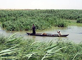 Marsh Arabs in a mashoof.jpg