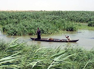 wetland area located in southern Iraq and partially in southwestern Iran and Kuwait