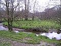 Meanders in the Nant Cledlyn - geograph.org.uk - 1181952.jpg