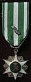 Medal, campaign (AM 2000.26.29-9).jpg