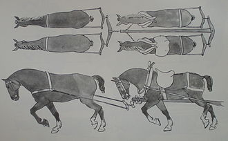 Breeching (tack) - Breeching on wheelers, attached to their collars, which are attached in turn to the vehicle pole