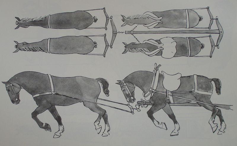 external image 800px-Medieval_horse_team.jpg