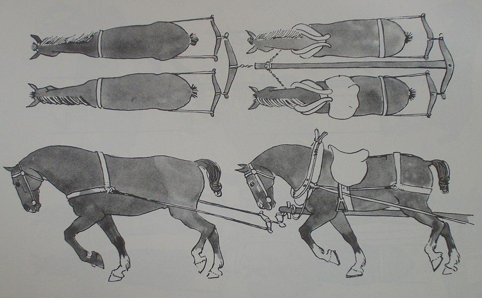 Medieval horse team
