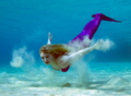 Mermaid Grace Swimming In The Med.png