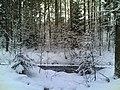 Metsä oja sulana - panoramio.jpg
