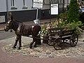 Międzychód - rzeźba upamiętniająca miejscowego mleczarza - panoramio.jpg