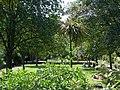 Millbank Gardens - geograph.org.uk - 186603.jpg