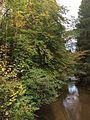 Mittelfranken (29615679834).jpg