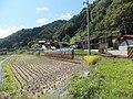 Miyagawacho Kuwano, Hida, Gifu Prefecture 509-4543, Japan - panoramio.jpg
