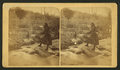 Mocassin Bill's daughter (woman wearing short buckskin dress and sword and holding rifle standing on a rock in a creek or river, dog waiting on bank.), from Robert N. Dennis collection of stereoscopic views.png