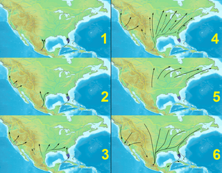 Monarch butterfly migration Monarch butterflies migrations across North America