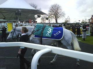 Monets Garden (horse) Irish-bred Thoroughbred racehorse