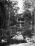 Mosman Bay Falls (2484292143).jpg