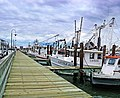 Mosquito Fleet Berth, Pier 19 Galveston.jpg