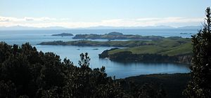 Motutapu Island - The nearest two headlands in this view from Rangitoto are part of Motutapu