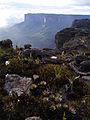 Mount Roraima, Venezuela (12371685033).jpg