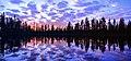 Muddus National Park, Sweden.jpg