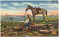 My range horse, original oil painting painted by Leo A. Arvette (8185173016).jpg