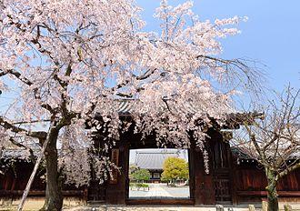 Jurakudai - Front gate of Myōkaku-ji