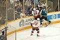 NHL (257687229).jpg