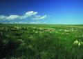 NRCSCO01011 - Colorado (1413)(NRCS Photo Gallery).tif